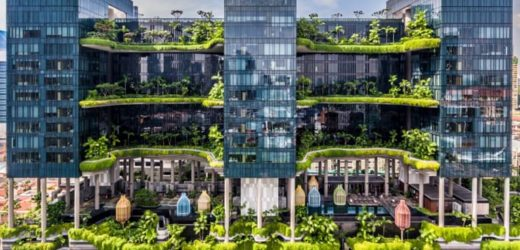 Green From the Top Down: Trasnforming Singapore's Parkroyal