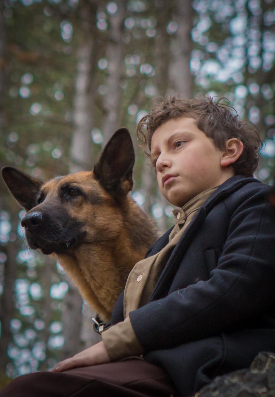 "Film Spotlight: ""Shepherd: The Story of a Jewish Dog"""
